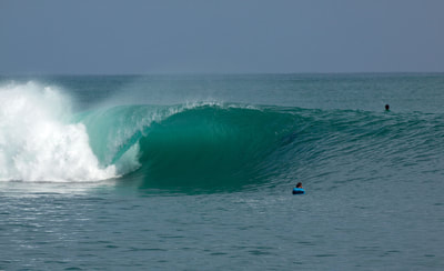 macaronis mamas surf spot perfect wave left hander mentawais islands