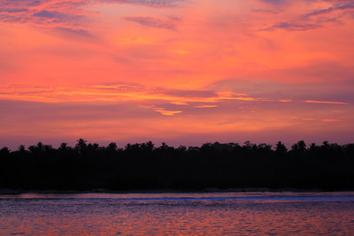 sunset pic mentawais islands palm trees